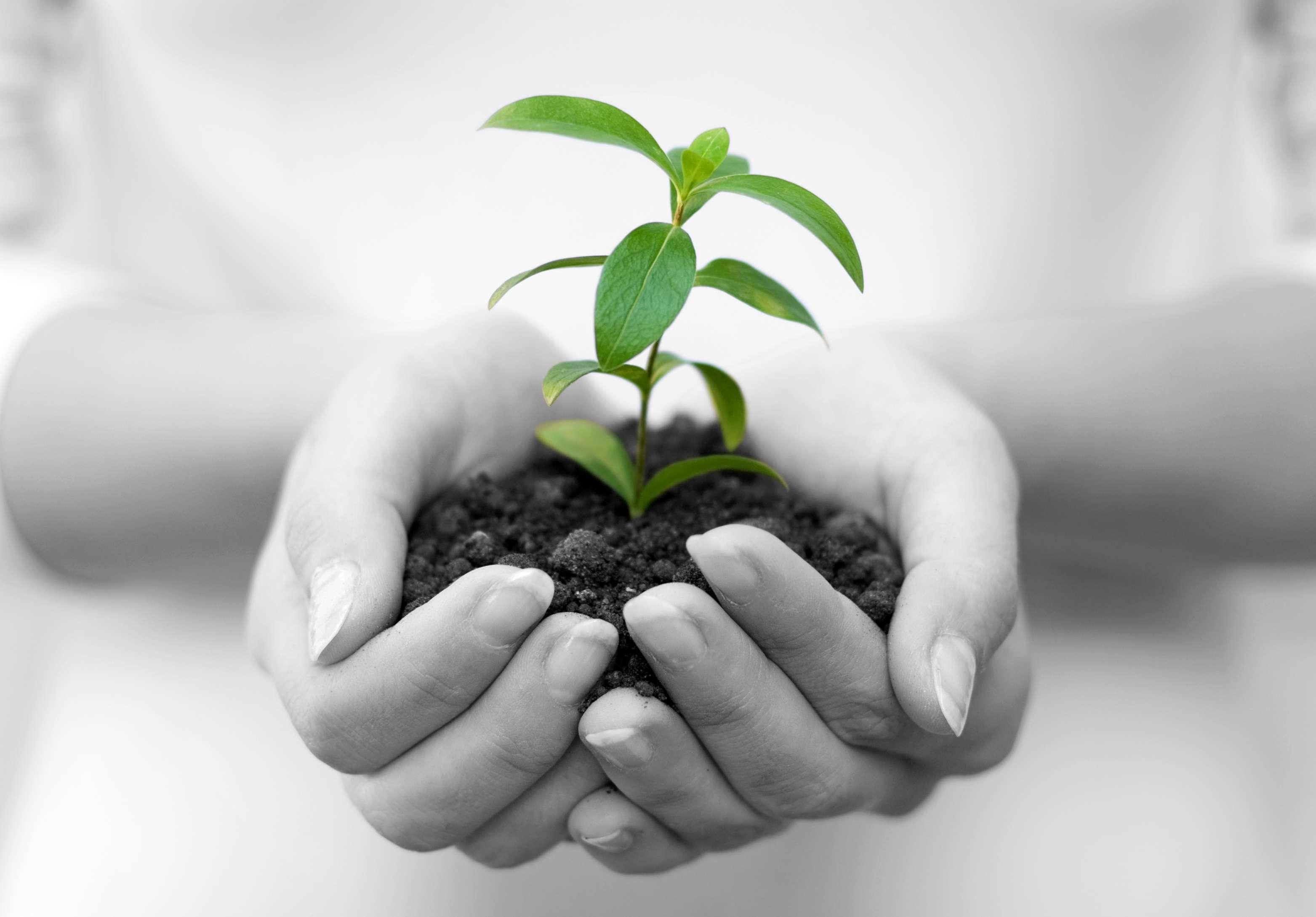 Unlocking Growth